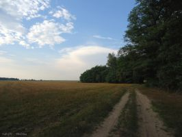 Poland. Countryside by MaRyS90