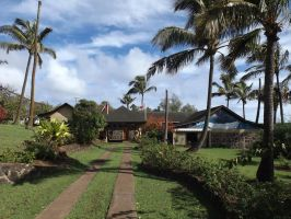 Easter Island Local Government by JohnRobertPosey