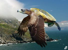 Flying turtle by Dwarf4r