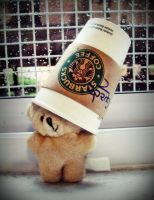 even bears love starbucks by 4everBlowingBubbles