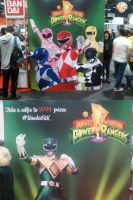 Mighty Morphin Power Rangers Display by DoctorWhoOne