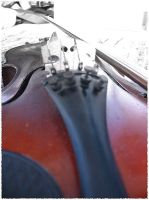 Violin by ludicrousity