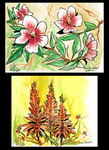 Flower Sketches by IntroducingEmy