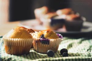 Blueberry Muffins by FlabnBone
