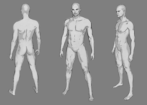 Male Character Template by Vortican