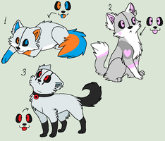 Portal cat adoptables (closed) by ponyportal