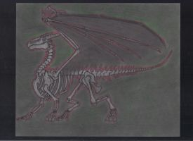 Great Red Welsh Dragon Skeleton by DRAGONLOVER101040