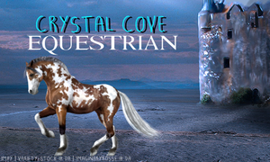 Crystal Cove Equestrian Banner 1 by InspiringWolves