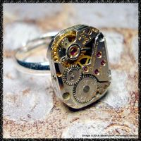 Steampunk Ring 2 by SoulCatcher06