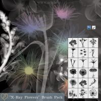 """X-Ray Flowers"" Brush Pack by flashtuchka"