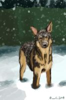 Dog in the snow by Hawoot