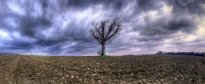 Standing in the Storm by wreck-photography