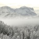 into the white by ssilence