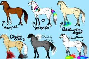 Designs imports by naomithewolf
