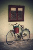 Old Bicycle by FilipPhotography