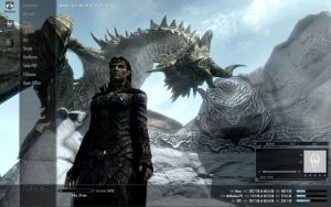 Skyrim Win7 Theme by yuhime