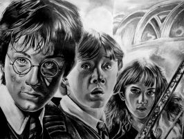 Harry Potter 2 by Vioolett-V