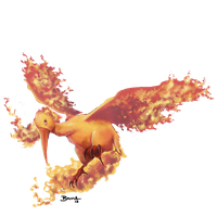 Moltres by brightless