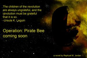 Operation-Pirate-Bee-Ad-7 by rmj7