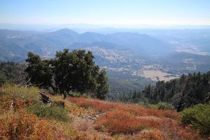 palomar mountain chatrooms - rent from people in palomar mountain, ca from $20/night find  unique places to stay with local hosts in 191 countries belong anywhere with.