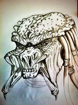 A Predator Sketch by Q-Dog2099