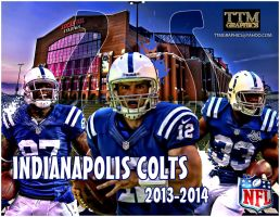 indianapolis colts 2013-2014 WALLPAPER by tmarried