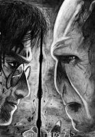 Harry Potter- Harry vs Voldemort by izziwizVIII