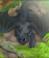 Toothless The Dragon- Recorded by GoldenTigerDragon
