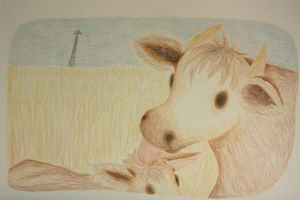 Cow and Calf by nfaas