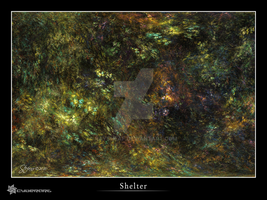 Shelter by raysheaf