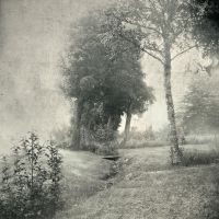 Garden Of Eden by intao