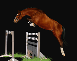 Entry for unknown show WIP by RvS-RiverineStables