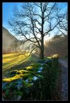 Borrowdale by MattAnth