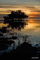 Camotes Mangrove Sunset by portpolyonamo1979