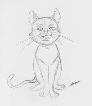A cat by Aso-Designer