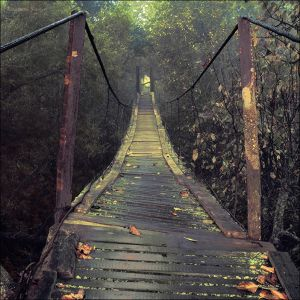 http://th02.deviantart.net/fs51/300W/f/2009/257/c/2/Autumn_bridge_by_KARRR.jpg