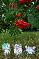 Rowanberry Season by Tyltalis
