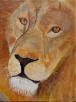 Lion by pureheart12