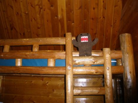 Domo is king of the bunk beds by ClaraKelley