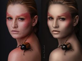 Beetle by annawsw