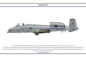 A-10 81st FS by WS-Clave
