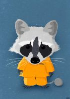 Raccoon by Bakus-design