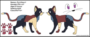 Patchheart's ref sheet for BlackBlod by ScourgesKit