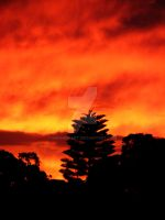 A Burnt West Australian Sky 3 by shhhhh-art