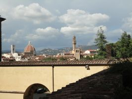 Firenze from Boboli Gardens 2 by nightshade-keyblade