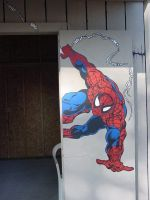 Spidey Door by buffysummrsx