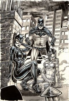 BATMAN FAMILY com by Vinz-el-Tabanas
