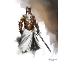 knight concept by RaV89