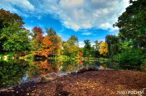 Autumn in Central Park by o0xerog0o
