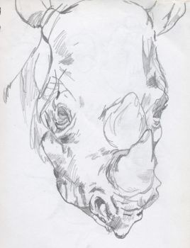 rhinocerous portrait by boot-cheese-3000